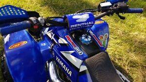 Yamaha Banshee Belleville Belleville Area image 6
