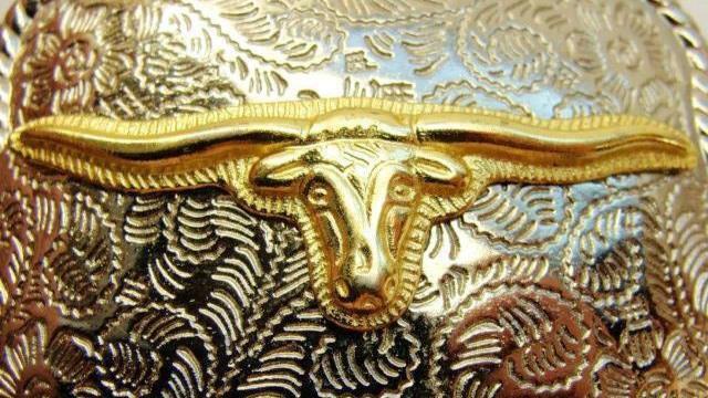 Texas Longhorn Belt Buckle Western Silver Tone & Gold Tone Cowgirl Cowboy Kid