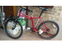Adult mountain bike muddy fox cruise 26 inch folding bike red brand new ideal xmas present