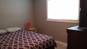 ROOMS AND BACHELOR APARTMENTS AVAILABLE-SHORT OR LONG TERM