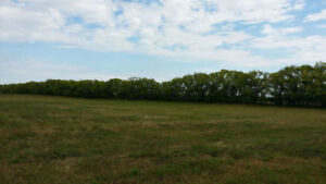 REDUCED - Land For Sale 12 Minutes East of City