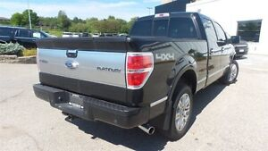 2012 Ford F-150 Platinum | Local Trade In, Loads of Options! Kitchener / Waterloo Kitchener Area image 5