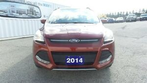 2014 Ford Escape SE, 4WD, Local Trade in Kitchener / Waterloo Kitchener Area image 9