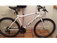 White Carrera Bike (Lost/Stolen)
