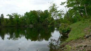 Vacant Land on Cranberry Lake!