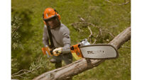 Need a tree cut or trimmed?