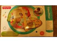 The Fisher-Price Luv U Zoo Deluxe Musical Mobile Gym