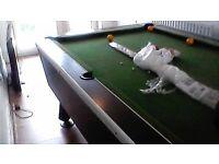 Pub Pool Table/Slate Table