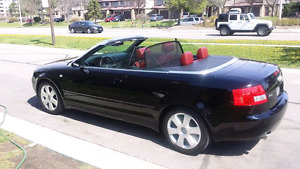 Audi A4 Convertible Fully loaded