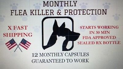 2-30 lbs Capstar Flea Killer MONTHLY control 12 Capsules Cat Or Small Dog Bonus