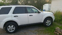 2010 Ford Escape XLT SUV ( AWD ) - Great Winter Vehicle!!