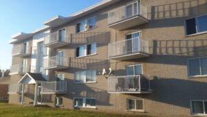 Appartement 3 1/2 à Louiseville