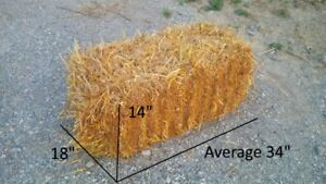 Small Square Straw Bales (No Hay)
