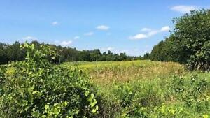5 ACRE LOT - RU zoning, many options! - $240K