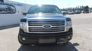 2012 Ford F-150 Platinum | Local Trade In, Loads of Options! Kitchener / Waterloo Kitchener Area image 9