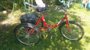 Tricycle rouge pour adult