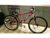 🚲 Giant Escaper Retro Mountain Bike - Fully Serviced