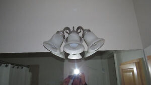 """Vanity Lights Brushed Nickel Excellent condition 3x60W Bulbs"" Moose Jaw Regina Area image 3"