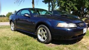 2003 Ford Mustang Belleville Belleville Area image 8