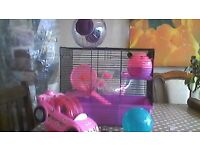 HAMSTER CAGE, WITH CAR AND BALL