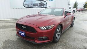 2016 Ford Mustang V6, Convertible, Drop Top Fun!