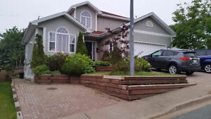 Roomy Renovated Basement Apartment, Great Location!