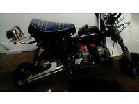 Monkey Bike Project