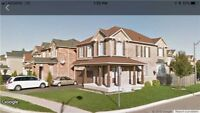 Upgraded Stunning 4 Bedrooms Large Home Location Of Brampton