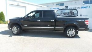 2012 Ford F-150 Platinum | Local Trade In, Loads of Options! Kitchener / Waterloo Kitchener Area image 2