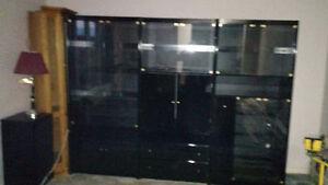 Big entertainment center/shelving unit