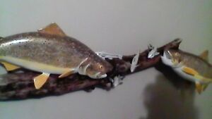 pair brown trout carving