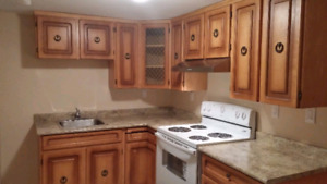 Amazing Basement Apartment for Rent in Whitby