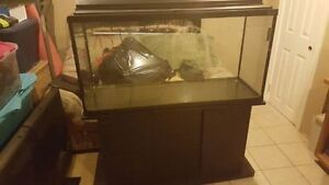 80 Gallon Haggen Aquarium with canopy and stand