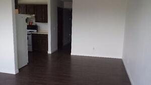 Three Bedroom Unit for Rent SE Calgary $960.00/month