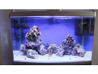 TROPICAL FISH TANK - LARGE BOW FRONT 170L AQUA ONE MAKE