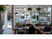 Part time waitress for Italian pizzeria bar in Fulham