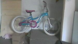 20'inch SuperCycle