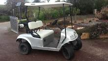 Electric Golf Cart 48 Volt With lights .Demo. Albury Albury Area Preview