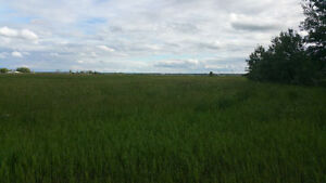 FOR SALE 2 PARCELS OF 77.54 ACRES GREAT HWY 28 EXPOSURE Strathcona County Edmonton Area image 3