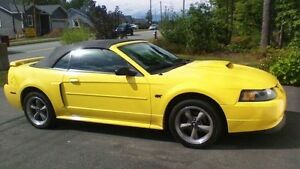 2002 Ford Mustang GT Convertible V8