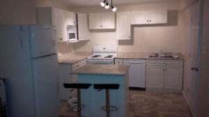 New Furnished 2 bedroom basement suite available immediately
