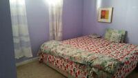 One Bedroom basement suite with Washroom kitchen living room