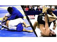 I am Looking for students or GYMs , I'm Professional Black belt Brazilian Jiu-jitsu . Gi or no Gi