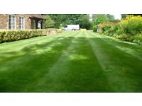 Gardening / Property Maintenance & Lanscaping