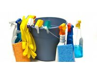 Domestic cleaner - many years experience CRB checked