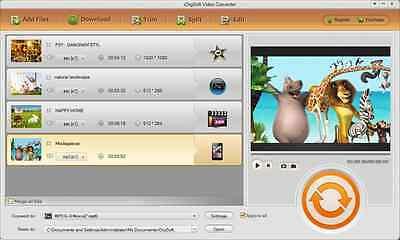 iOrgsoft Flip Video Converter Convert flip videos to AVI, MKV, MPG, VOB, SWF Avi Mpg Converter