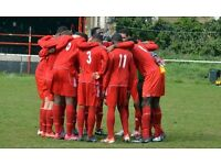LONDON SEMI PROFESSIONAL FOOTBALL CLUB REQUIRES PLAYERS