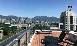 (AMAZING LOCATION) (2888 cambie street)  w/PARKING