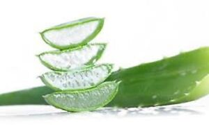 PURE ALOE VERA HERBAL GEL  100g