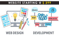 Professional Web Web Design and Development from $399